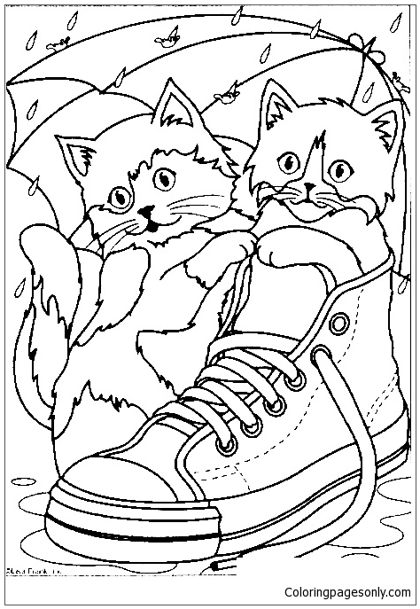 Cats In A Sneaker Coloring Page