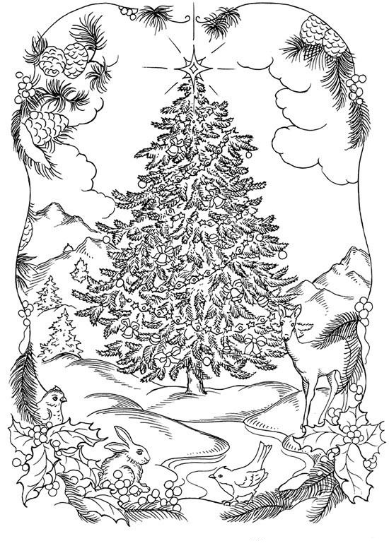 Christmas Tree In Nature Coloring Page
