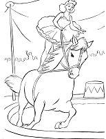 Circus Horse 1