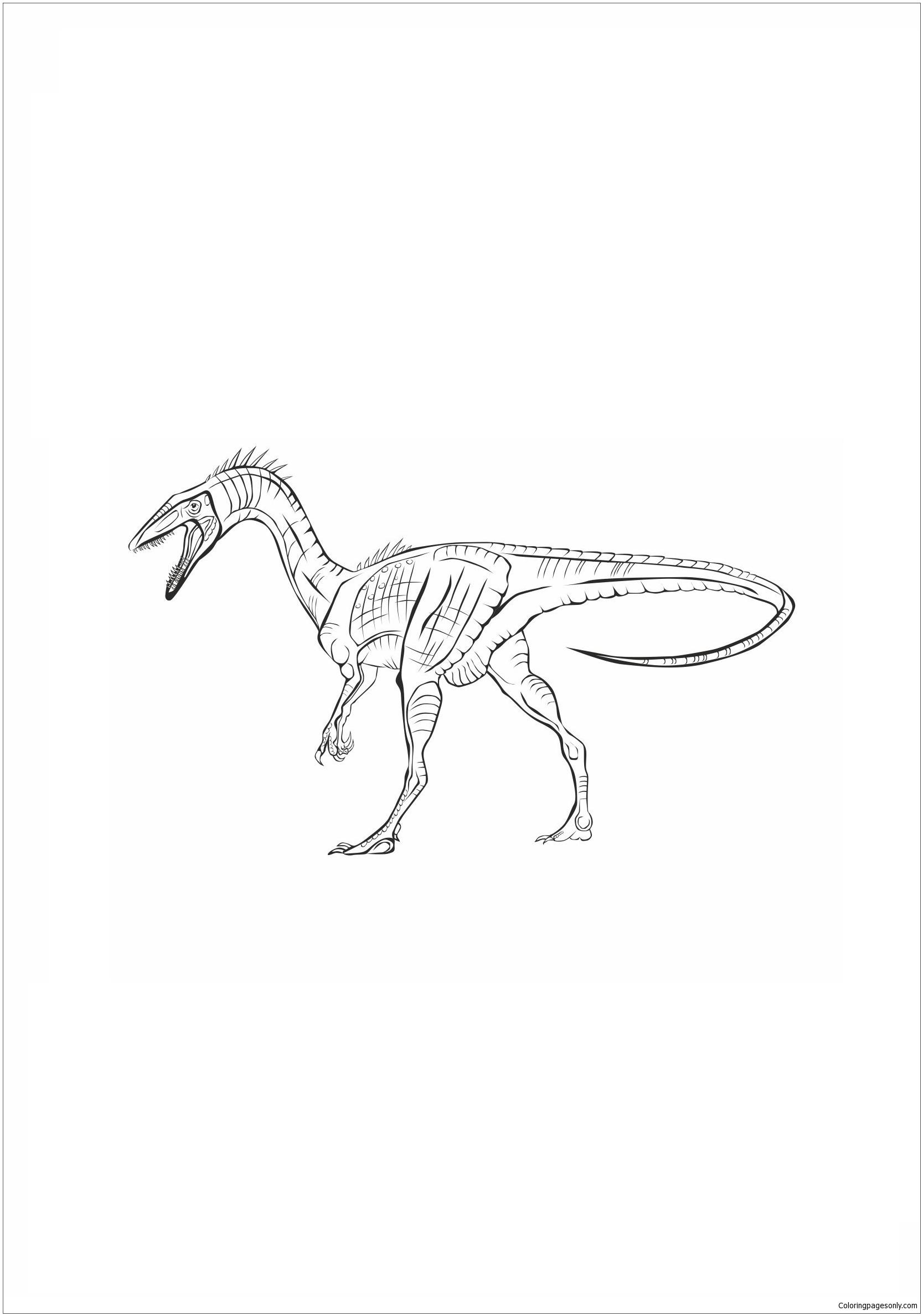 Coelophysis Bauri Dinosaur 1 Coloring Page