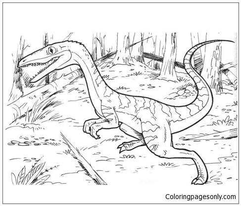 Coelophysis Bauri Dinosaur Coloring Page