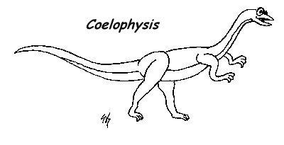 Coelophysis Dinosaurs 2