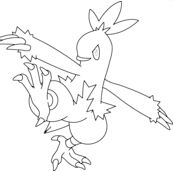Combusken Coloring Page