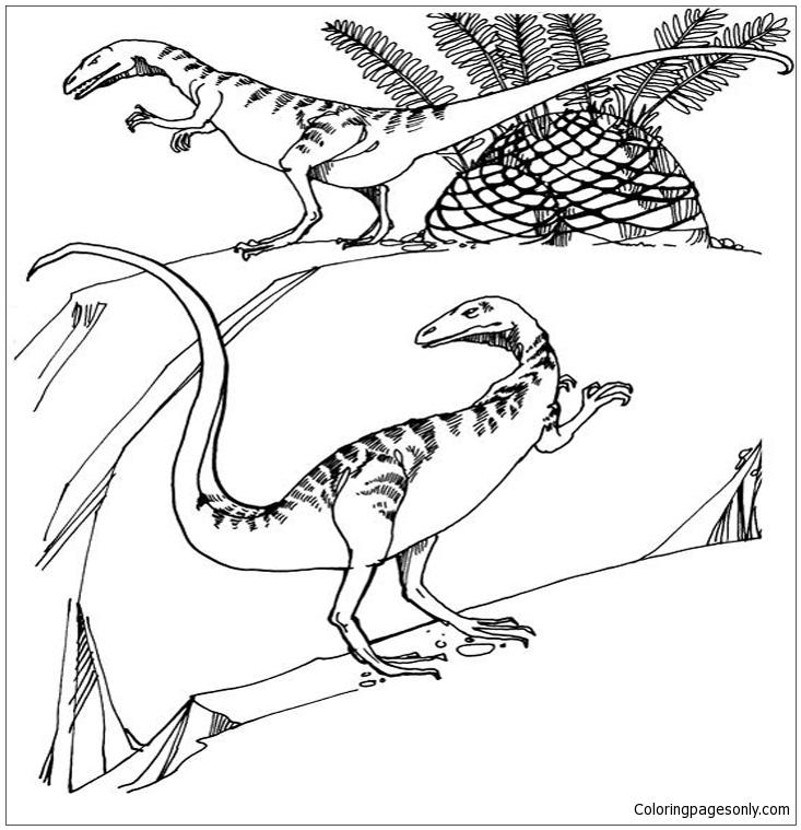 Compsognathus Dinosaur Coloring Page