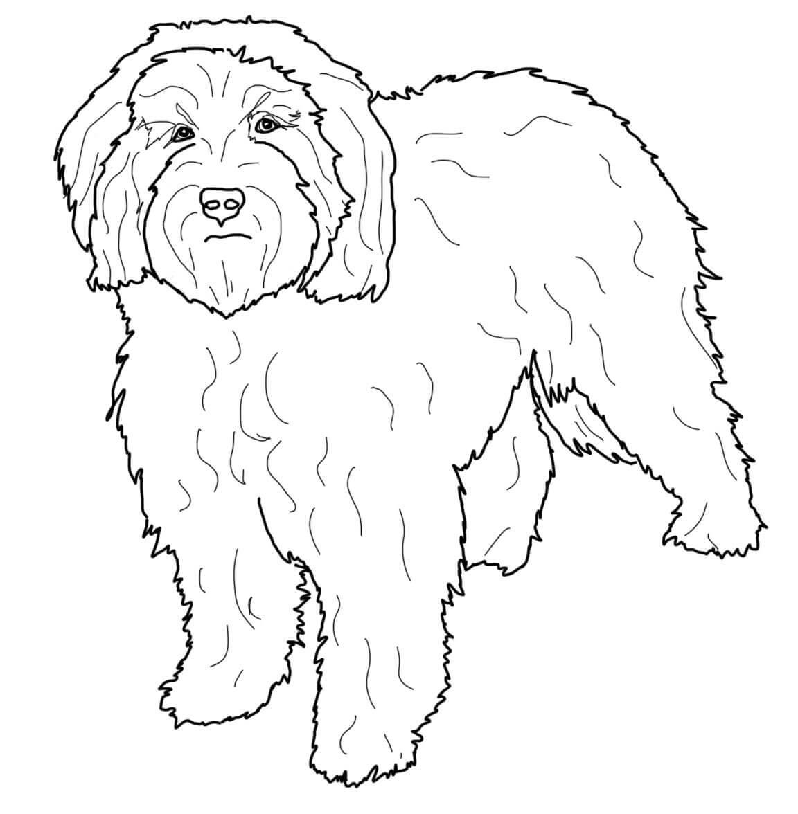 Cookapoo Coloring Page