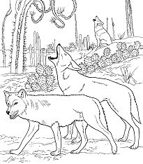 Coyotes Howling in Desert Coloring Page