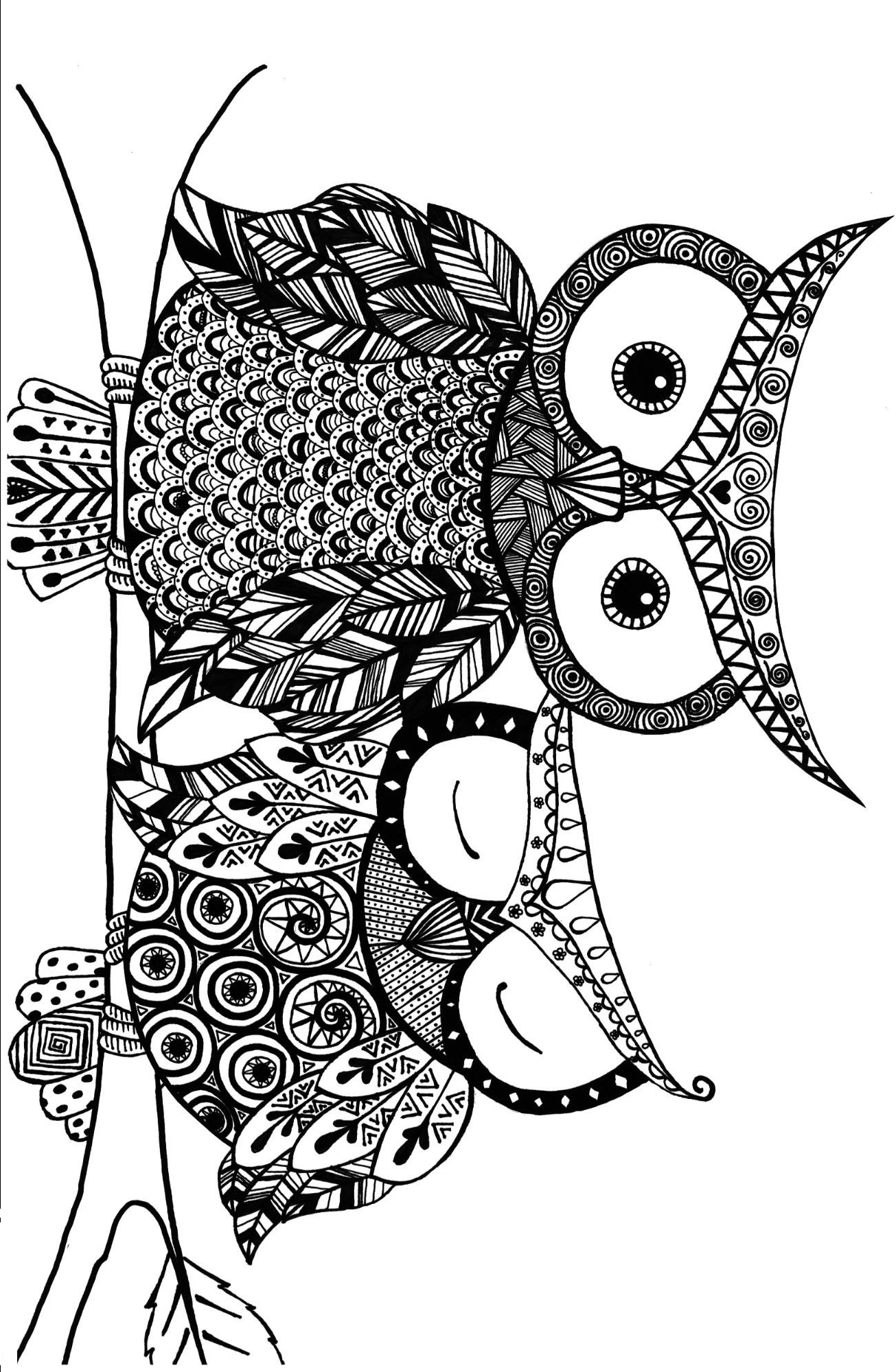 Creative Owls Coloring Page