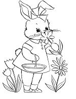 Cute Bunny Picking Flower