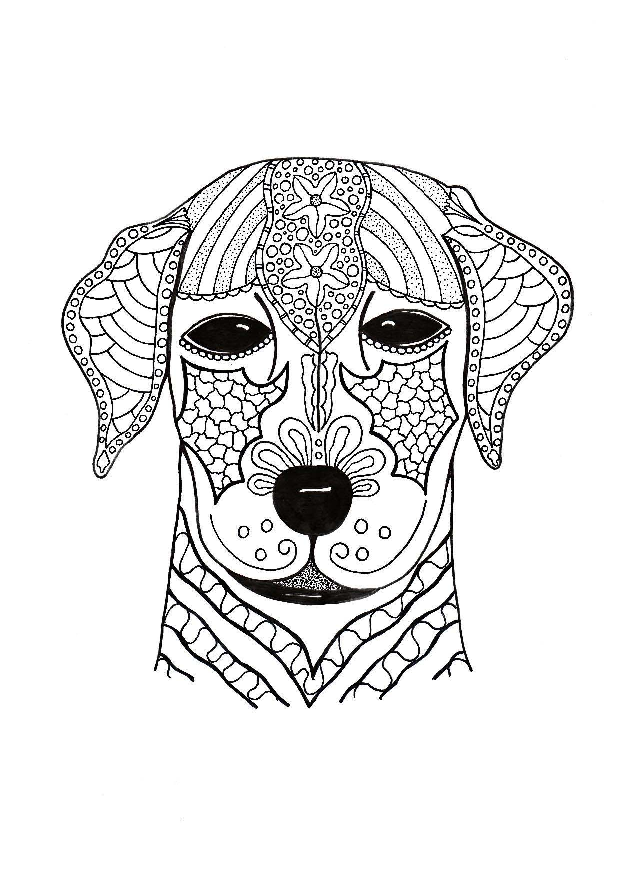 Cute Dog Face Coloring Page