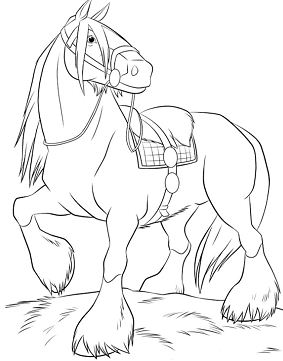 Cute Horse 2