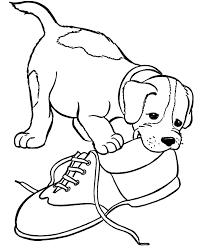 Cute Puppy 10