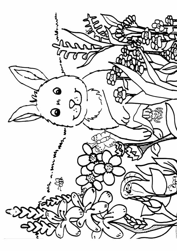 Cute Rabbit with Spring Flowers Coloring Page