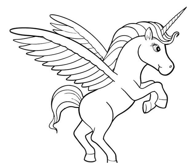Cute Unicorn-image 5