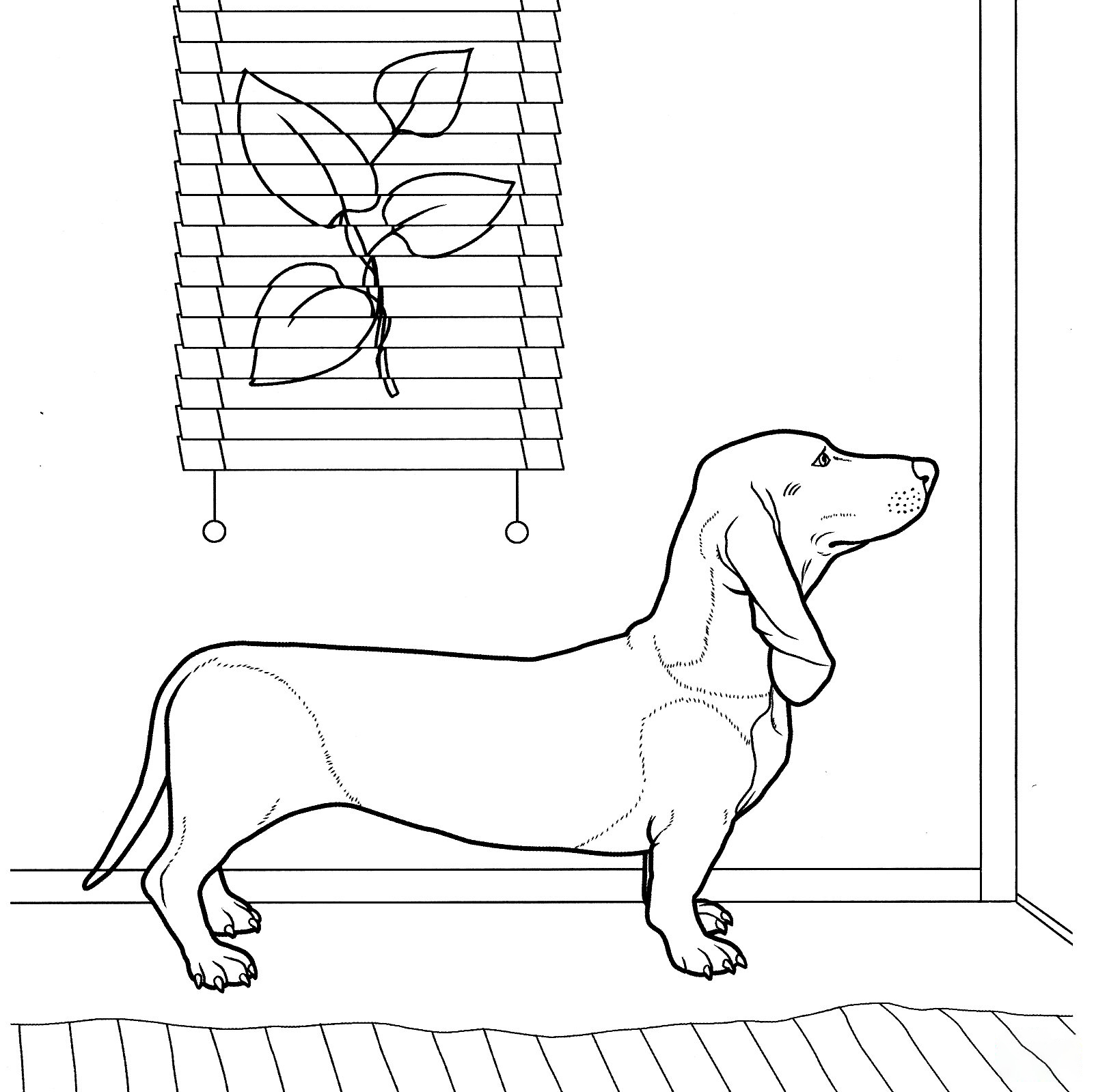 Dachshund Coloring page Coloring Page