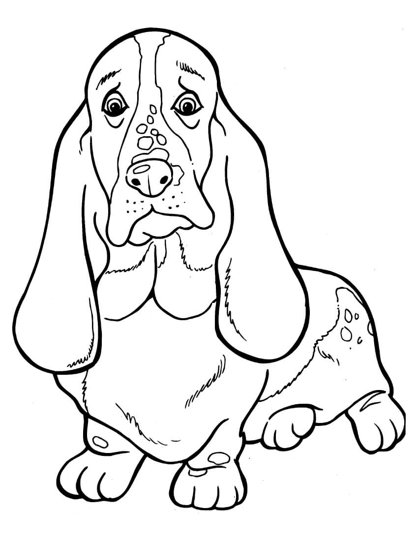 Dachshund Details Coloring Page
