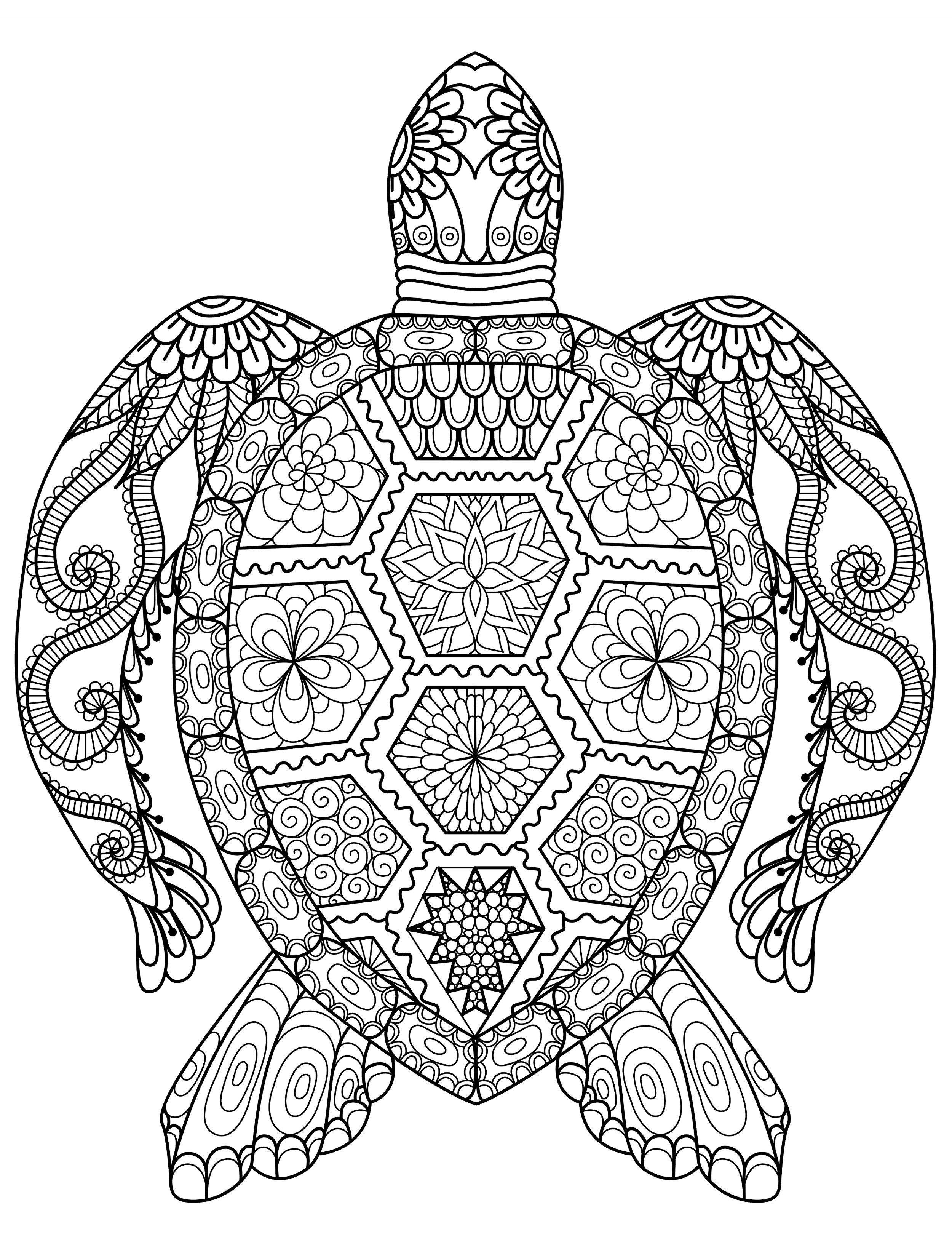 Decorative Turtle Coloring Page