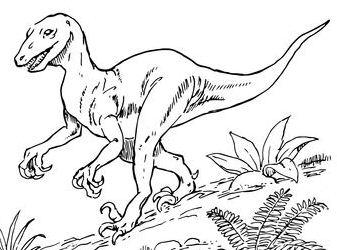 Deinonychus Dinosaur  Coloring Page