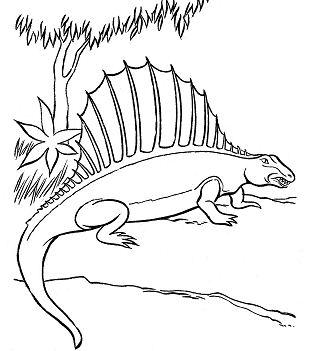 Dimetrodon Dinosaur 2