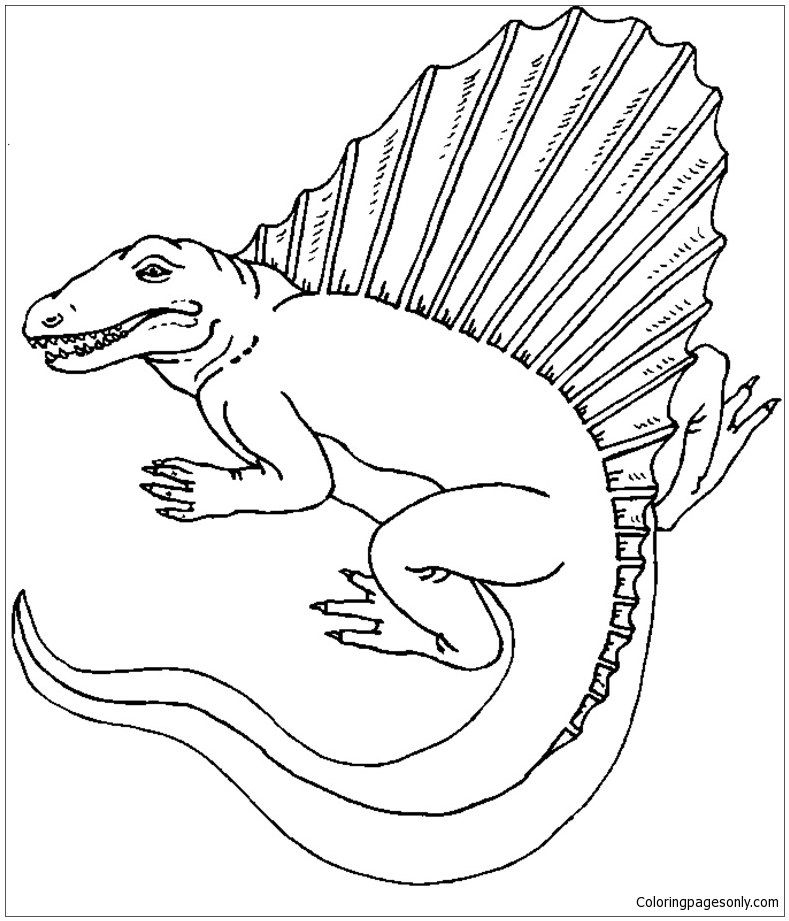 dimetrodon dinosaur 3 coloring page free coloring pages online. Black Bedroom Furniture Sets. Home Design Ideas