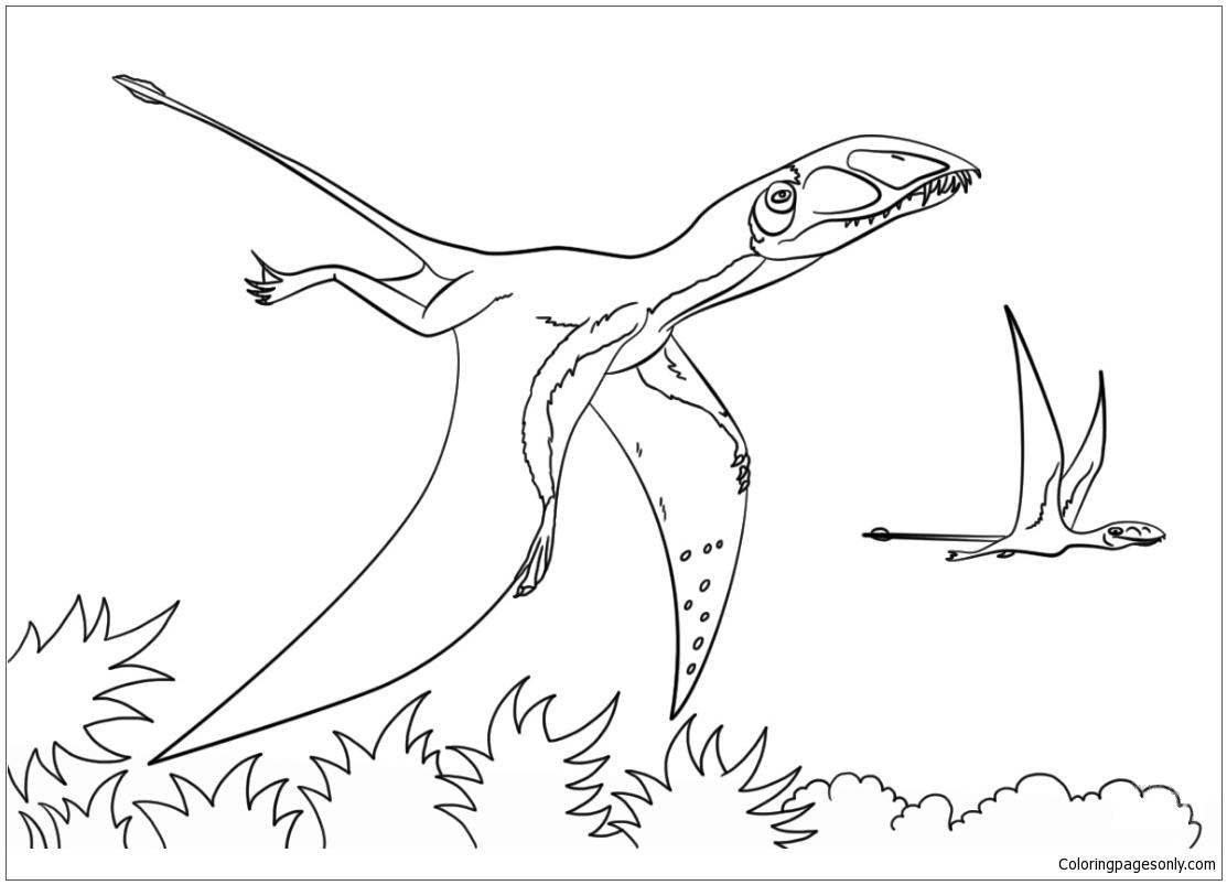 Dimorphodon Coloring Page