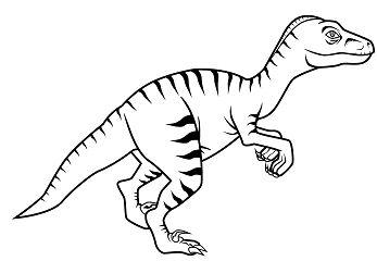 Dinosaur Velociraptor 1