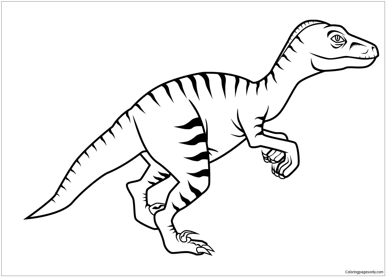 Dinosaur Velociraptor 1 Coloring Page