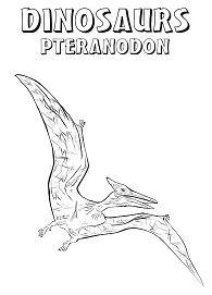 Dinosaurs Pteranodon Coloring Page