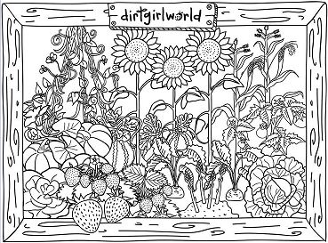 Dirt Girl World Garden