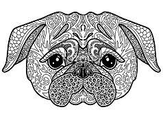 Dog Pug doodle illustration
