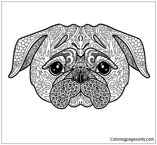 Dog Pug Doodle Illustration Coloring Page Free Coloring