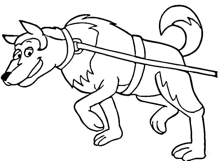 Dog Sled Coloring Page