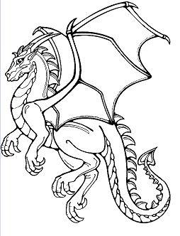 Dragon - image 4