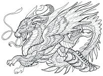 Dragon For Adults Coloring Page