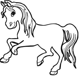 Elegant Horses