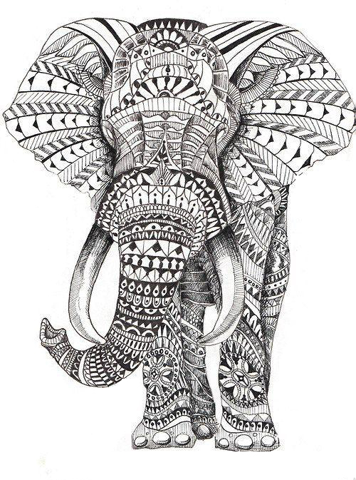 Elephant For Adults Coloring Page
