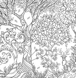 Enchanted Forest 1 Coloring Page