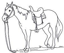 Endearing Horse