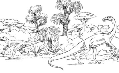 Euparkeria And Coelophysis