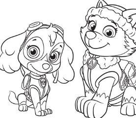 Everest And Skye Paw Patrol
