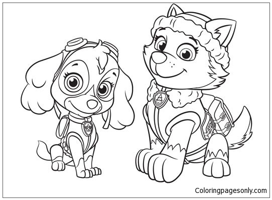Everest And Skye Paw Patrol Coloring