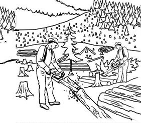 Exploitation of the jungle Coloring Page