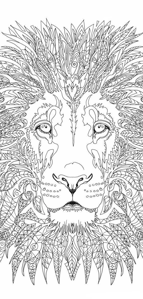 Face of Lion Coloring Page