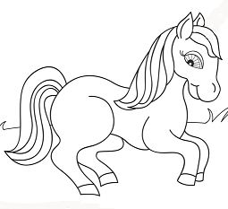 Fancy Horse