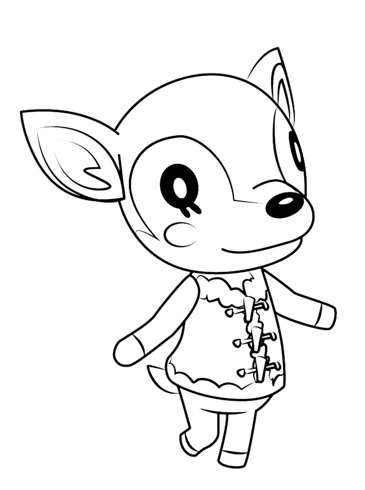 Fauna deer