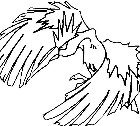 fearow pokemon