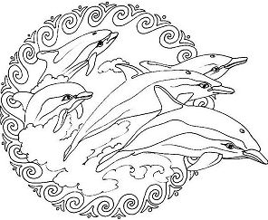 Flippers Jumping from the Sea Mandala Animal