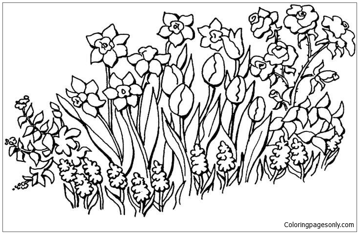 Flowers Garden Coloring Page