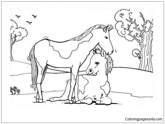 Foal And Mare Coloring Page