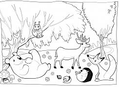 Forest Animal 1 Coloring Page