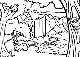 Forest Animals 2 Coloring Page